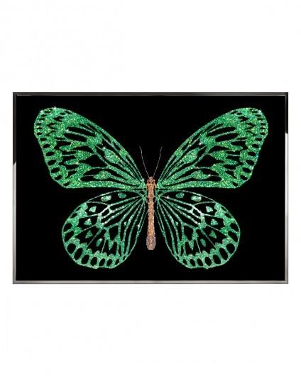 Visionnaire Greenbutterfly