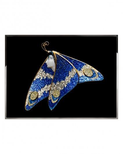 Visionnaire Ladybutterfly